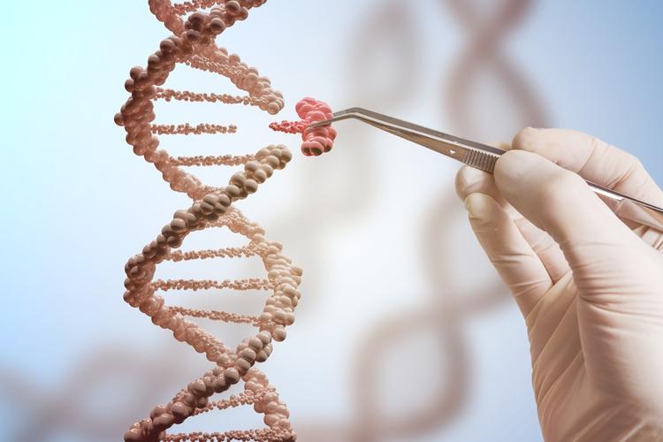 genetique-mode-de-vie
