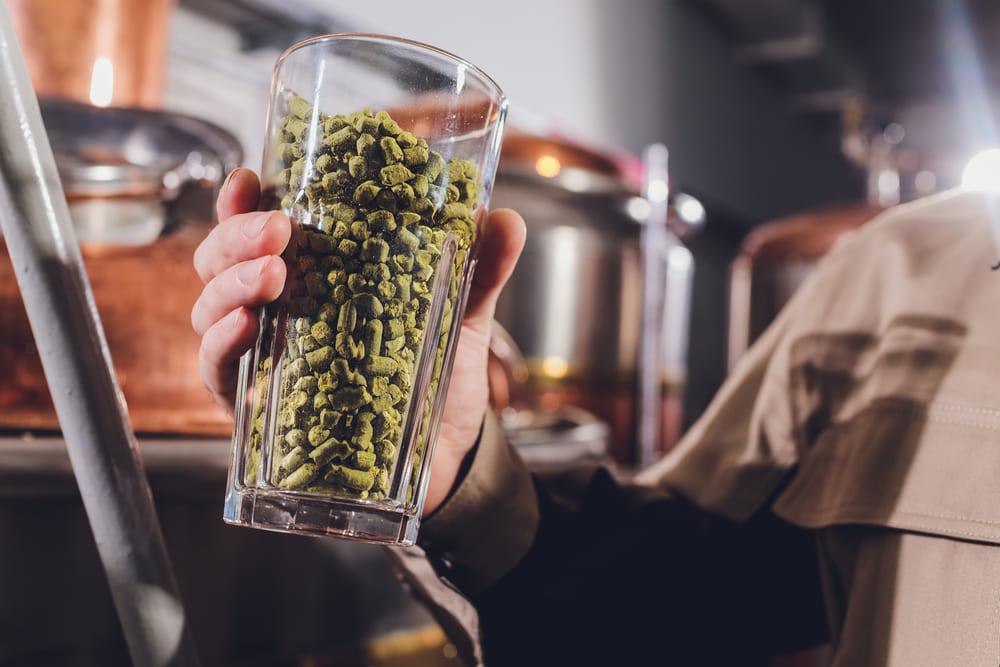 La levure de bière