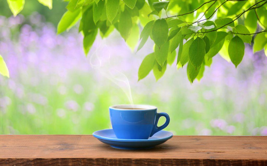 thé et infusion pour maigrir